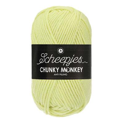 Scheepjes Chunky Monkey Mint (1020)