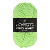 Scheepjes Chunky Monkey Pistachio (1316)