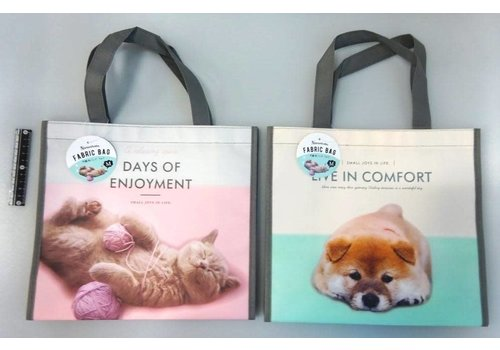 shopping bag(non-woven,coating)