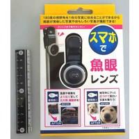 Fish-eye lens for smartphone