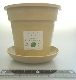 Pika Pika Japan Eco planter with saucer round ivory