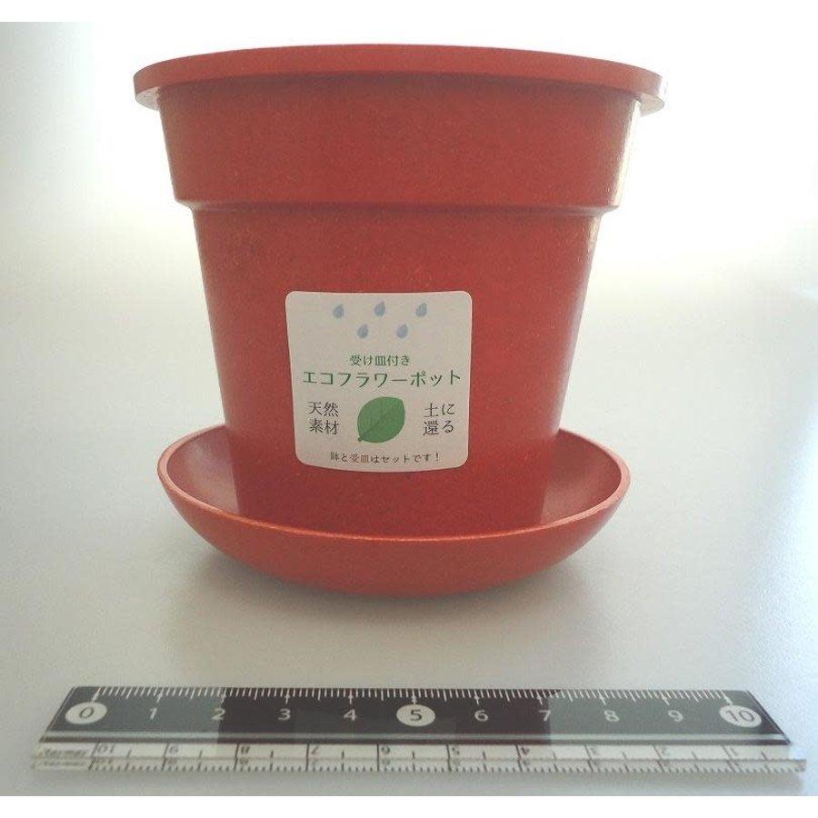 Eco planter with saucer-1