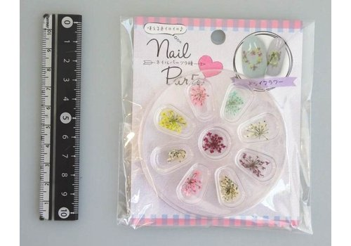 Nail parts 9p dried flower