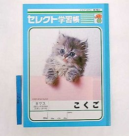 Pika Pika Japan B5 Japanese 8cells cross leader notebook K102 for Japanese leaner