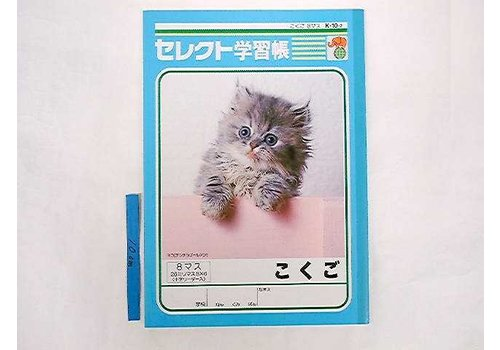 B5 Japanese 8cells cross leader notebook K102 for Japanese leaner