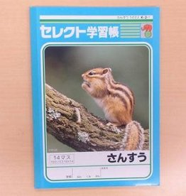 Pika Pika Japan B5 Mathmatics 14cells notebook k21 for Japanese leaner