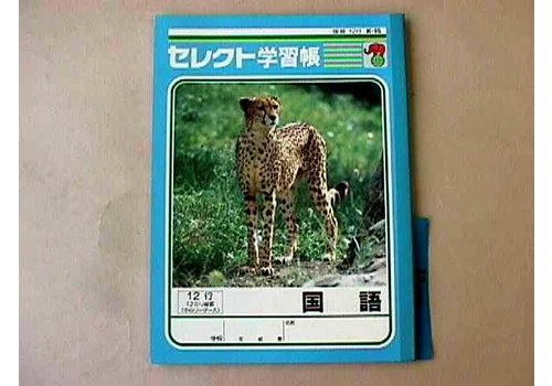 B5 size Japanese notebook 12 lines