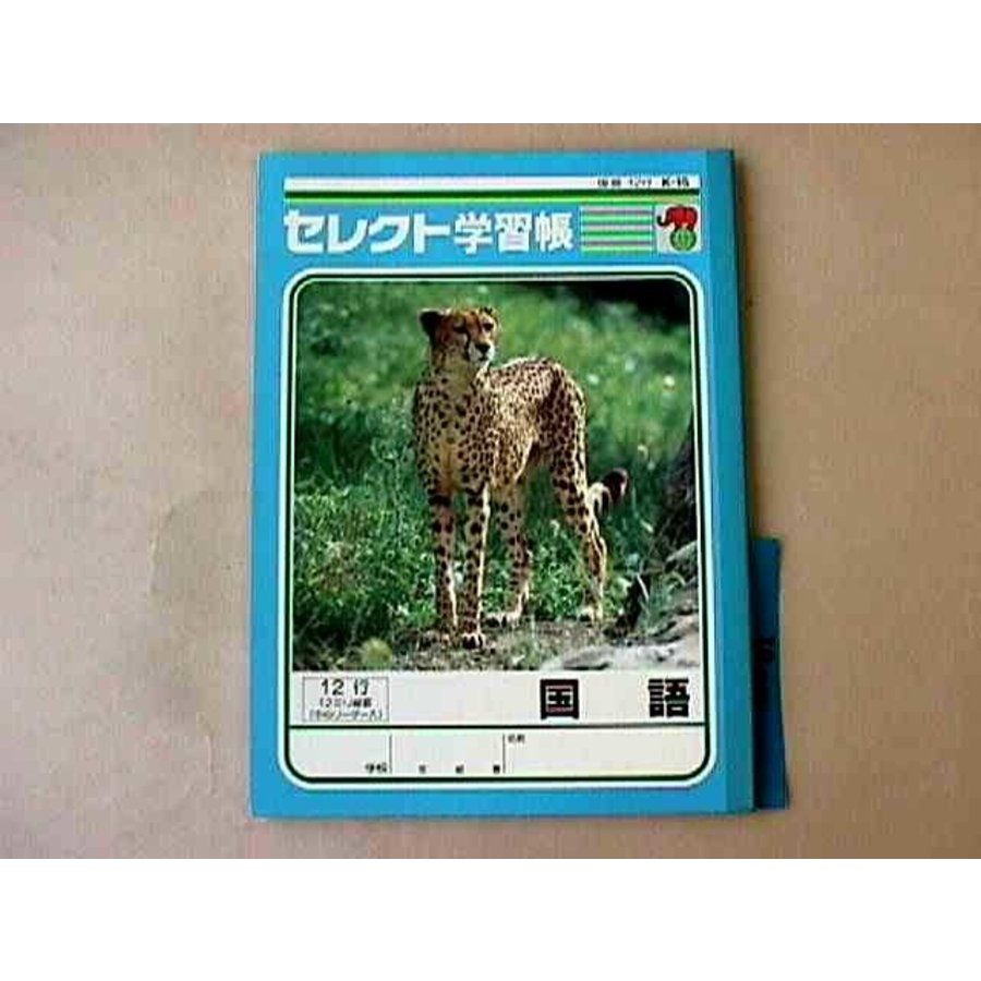 B5 size Japanese notebook 12 lines-1