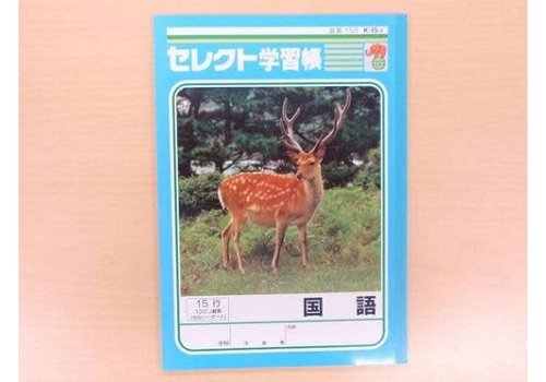 B5 size Japanese notebook 15 lines with center line