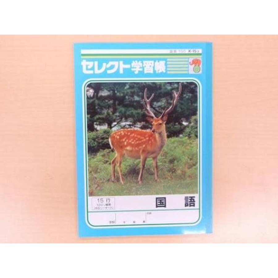B5 size Japanese notebook 15 lines with center line-1