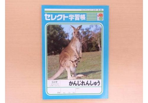 B5 schrift voor oefenen Japanse karakters, 84 karakters, K45