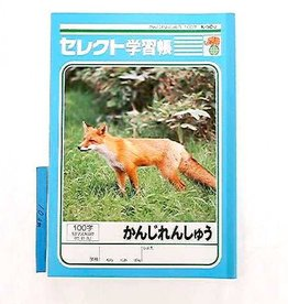 Pika Pika Japan B5 size Japanese notebook 100words K502