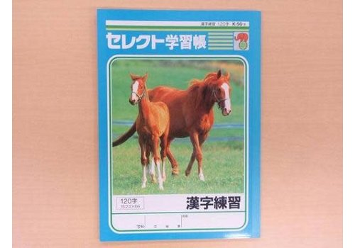 B5 size Japanese notebook 120words
