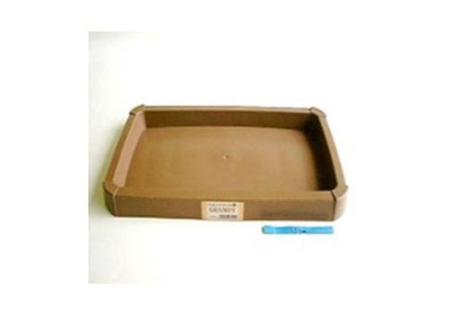 Woody plante saucer brown