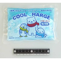 ?Cool charge 200g