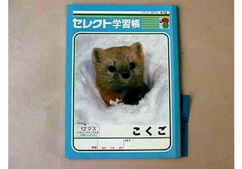 B5 Japanese 12cells notebook