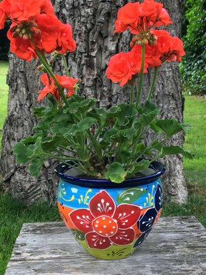 Spanish Flower Pot Canarias