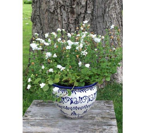 Spanish Flower Pot Blanco Azul