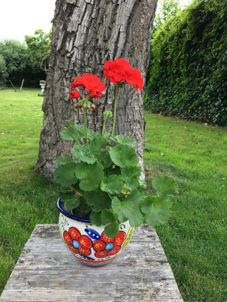 Spaanse Bloempot Flor Mogan