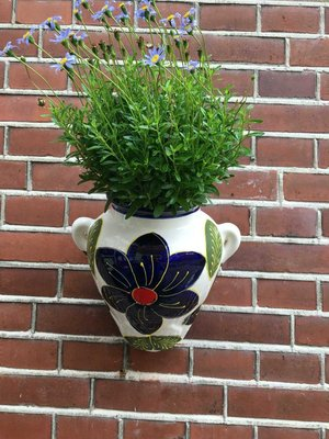Hanging Flower Pot Azul Blanco