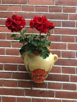 Hanging Flower Pot Flor Roja