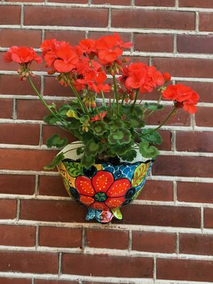 Hanging Flower Pot Craquele Small