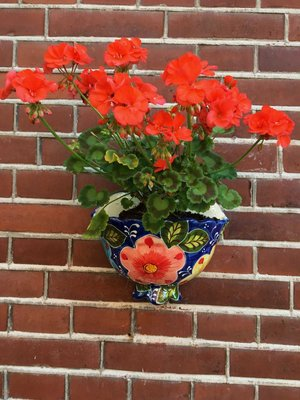 Hanging Flower Pot Marquez Small