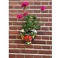 Hanging Flower Pot Campina Small