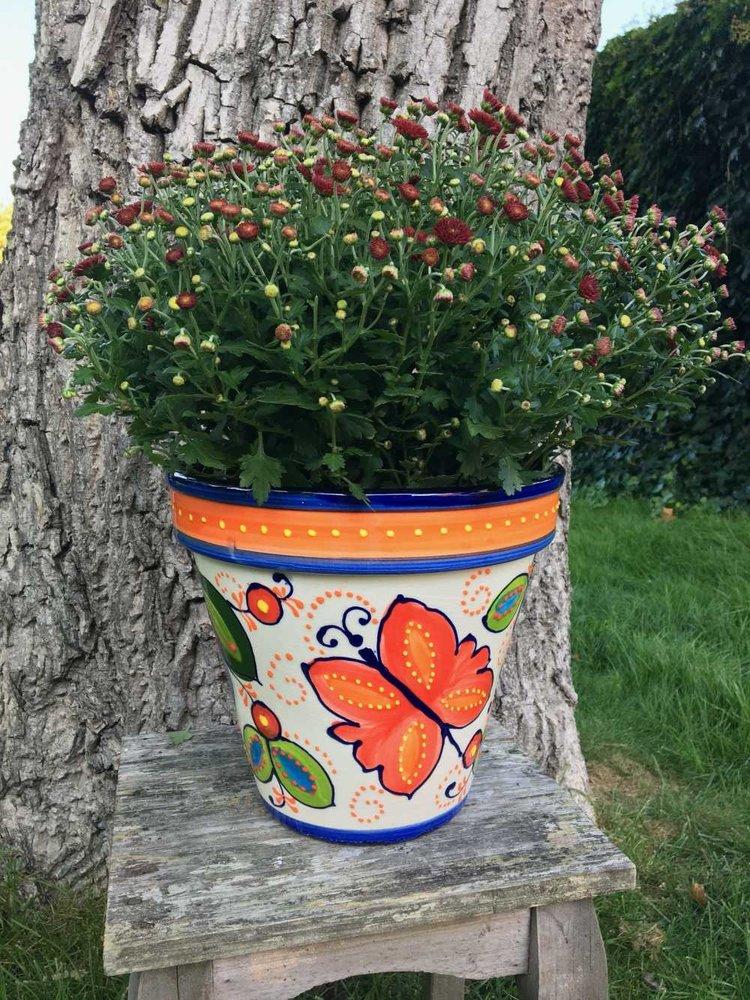 Spanish Flower Pot Mariposa