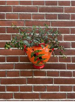 Hanging Flower Pot Olivas Provence