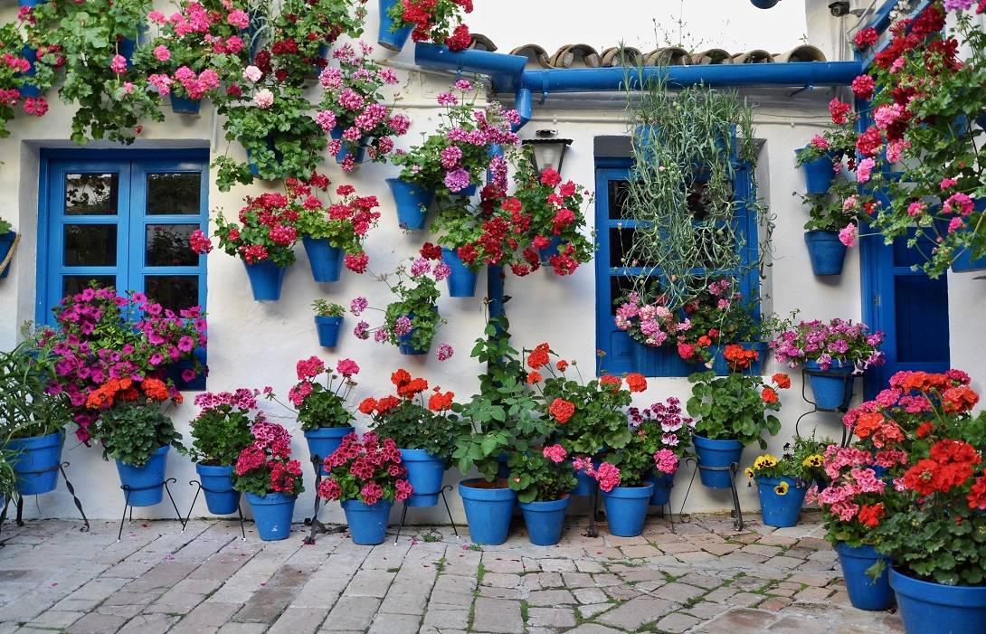Spaanse bloempotten