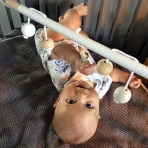 Bo and the Baboon Bo and the baboon babytrapeze | Wit