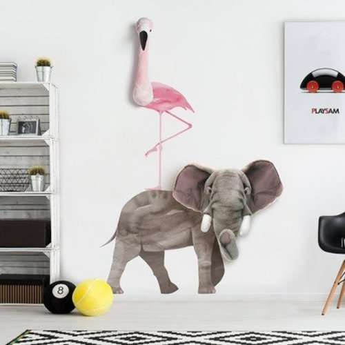 Wild and Soft Wild and Soft muursticker | Olifant