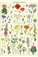 Cavallini Cavallini Wildflowers WF