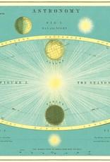 Cavallini Cavallini Astronomy ASTRO