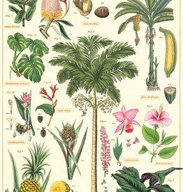 Cavallini Tropical plants TROP