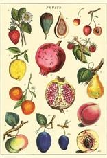 Cavallini Cavallini Fruit2 FRT2