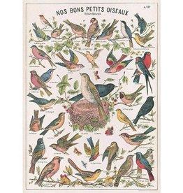 Cavallini Petit oiseaux BRDCHT