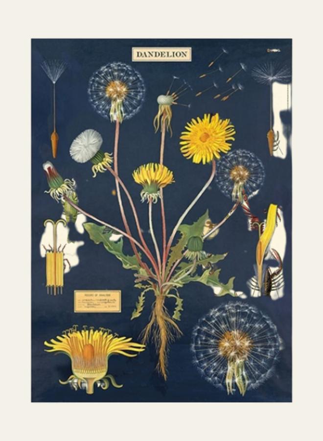 Cavallini Vintage Poster Dandelion