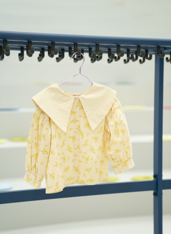 Little Occasion Big Collar Blouse
