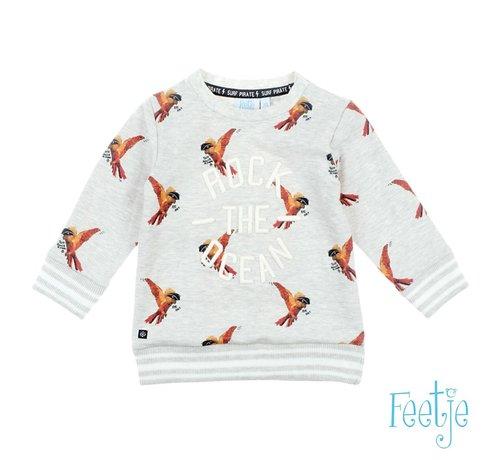 Feetje Feetje grijze sweater met vogels