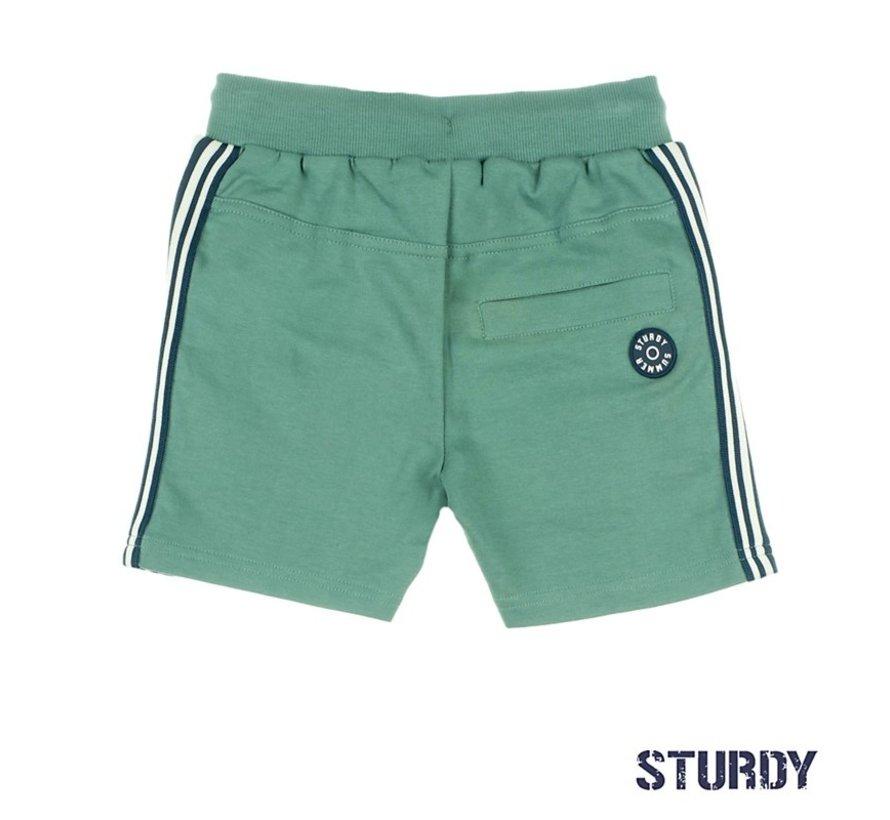 Sturdy groene short