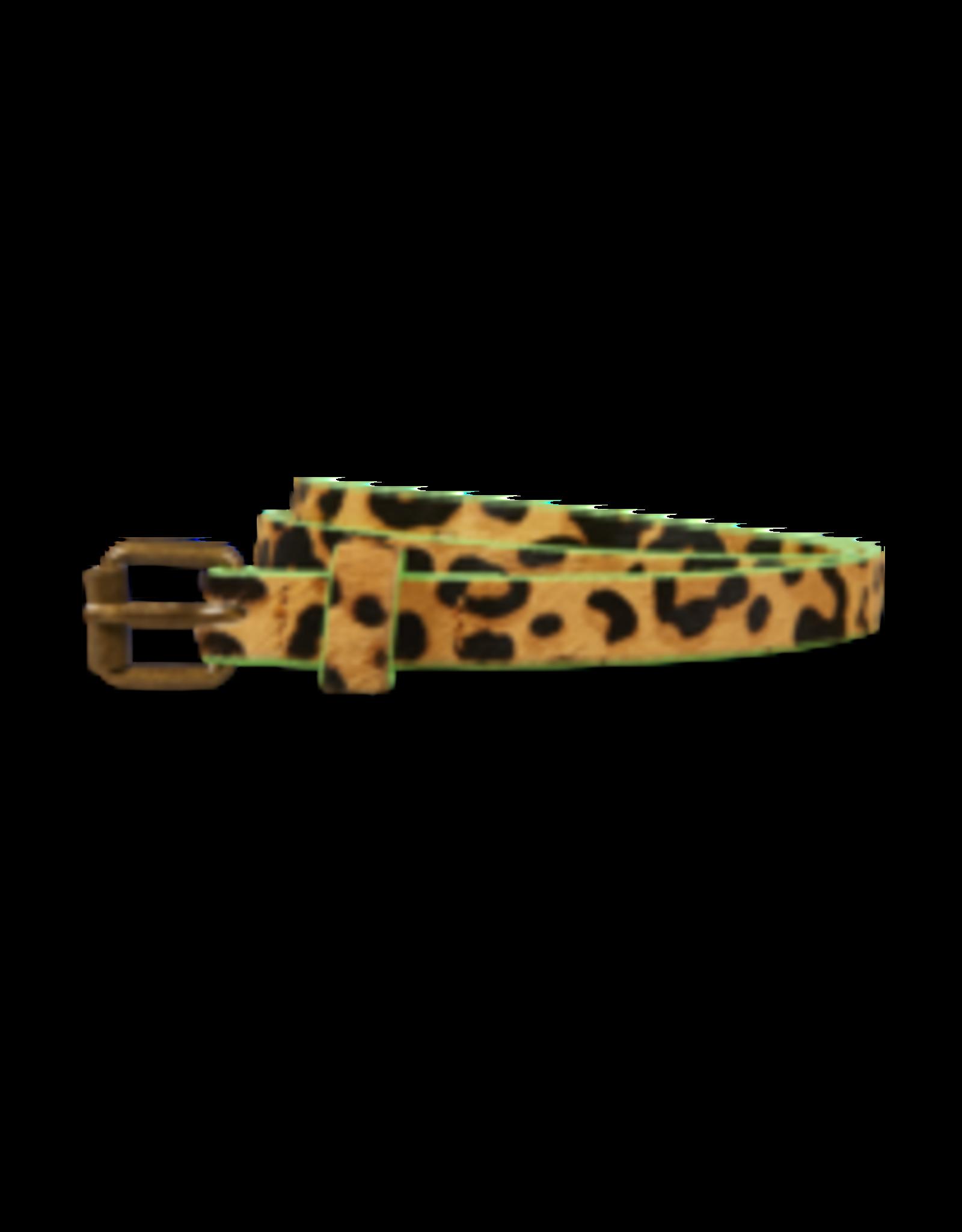 Scotch&Soda R'belle 158232 FW20 leather belt animal print