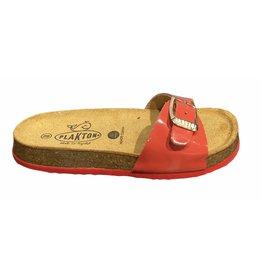 Plakton Plakton coral slipper