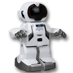 Robot Echo Bot wit SL88308