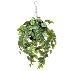 Kunstplant scindapsus pictus hangend 65 cm 420845