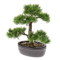 Kunstplant ceder bonsai groen 32 cm 420001