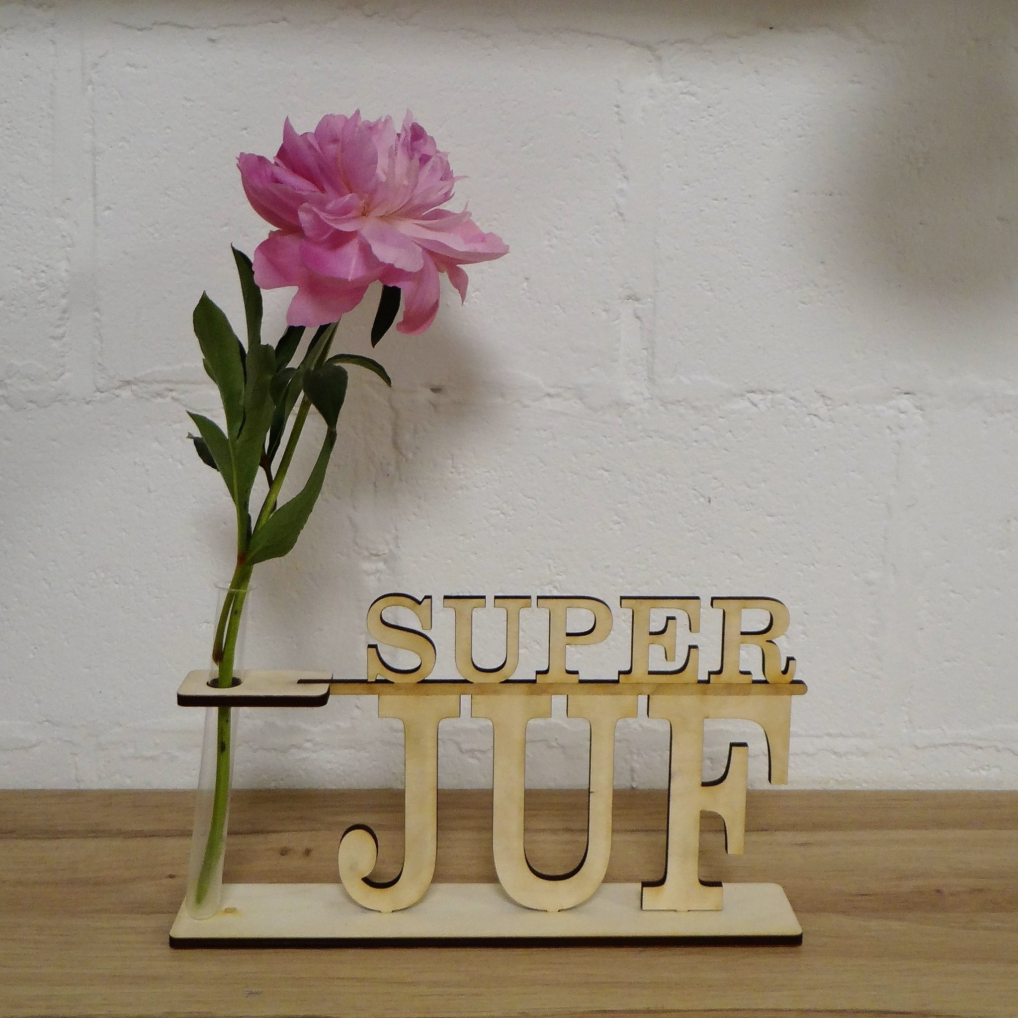 Super Juf Vaasje