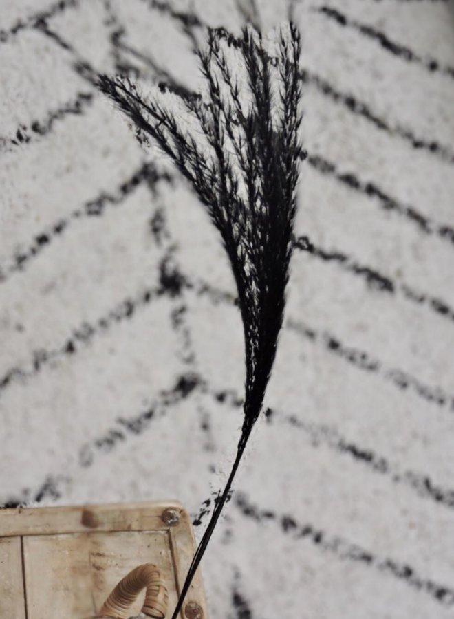 Gedroogde Stipa Feather Zwart - 70 cm - per stuk
