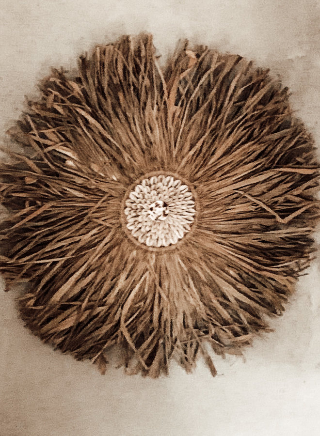 Sisal Wanddeco met Kaurischelp 40 cm